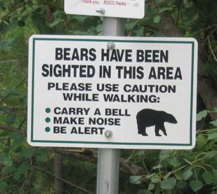 Медведи в Центральном Парке [Амин]