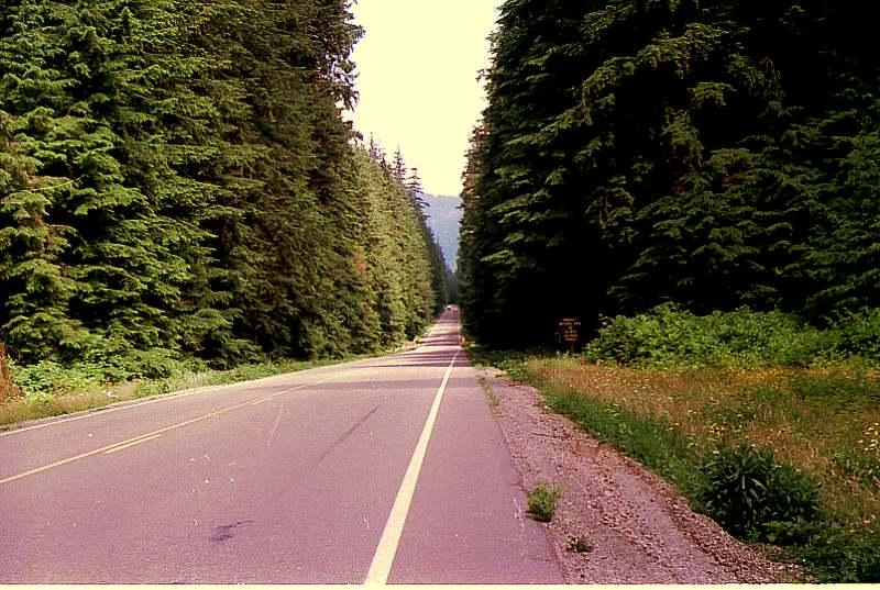 Дороги Форкса Trassa-73