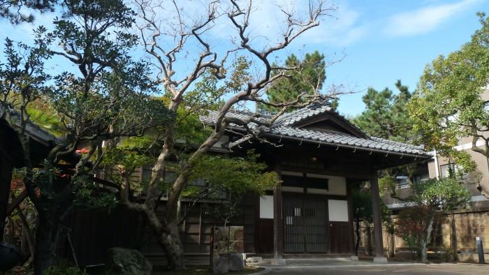 Япония сафари в ниигате