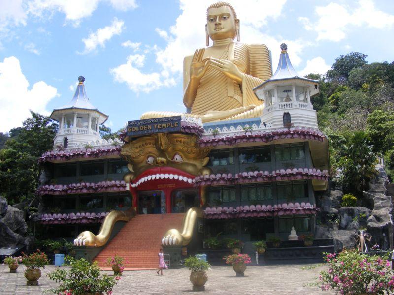 Буддистский колледж []