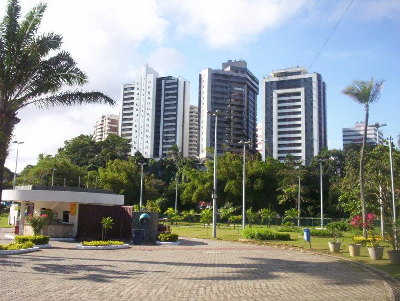 Сальвадор - университет []