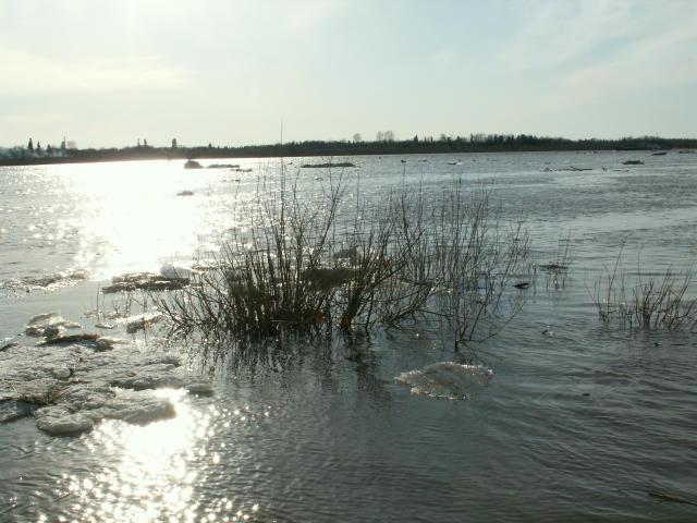 Широка и полноводна река весной