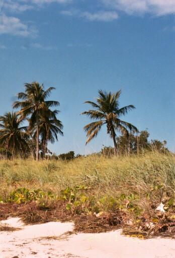 Бахья Хонда Пляж со стороны океана [C.B.]